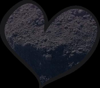 LoveNess Pigment Black