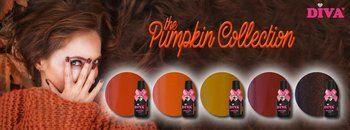 Diva Pumpkin collectie incl glitter